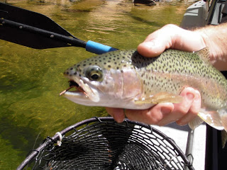 Fly Fishing Terms